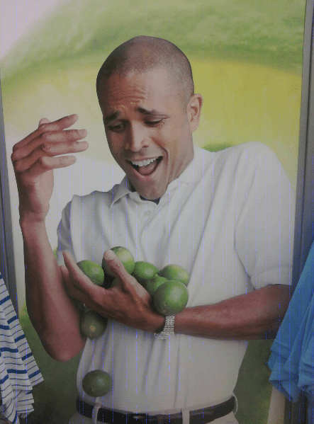 why cant I hold all these limes meme template