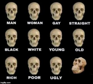 Different Types of Skulls (blank) Opinion meme template