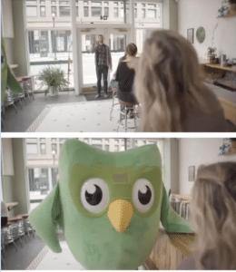 Duolingo Bird in Diner Food meme template