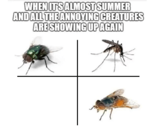 It's almost summer and the annoying creatures are showing up Rick and Morty meme template