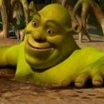 Shrek in Mud Bath simpsons meme template blank