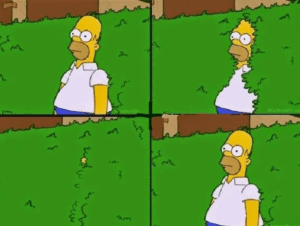 Homer Sinking into Bush Subterfuge meme template