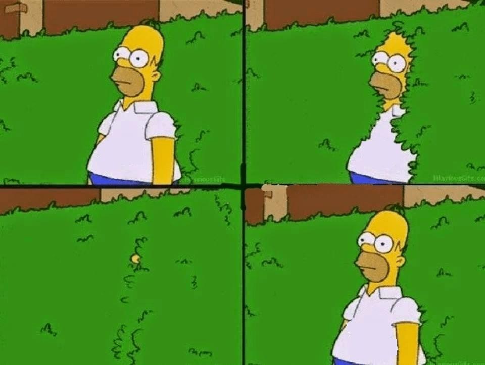 Homer Sinking into Bush  meme template blank