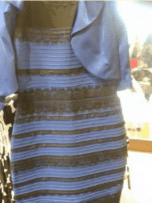 Black and Blue Dress Classic meme template