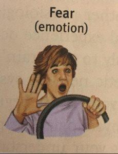 Fear (emotion) textbook Surprised meme template