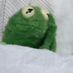 Kermit Awake in Bed / Anxiety  meme template blank