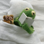 Kermit Reading to a bear in bed  meme template blank frog