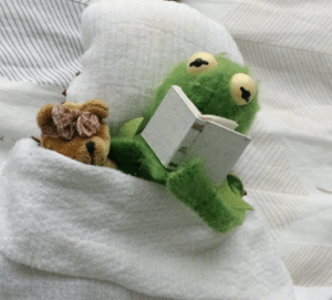 Kermit Reading to a bear in bed Frog meme template