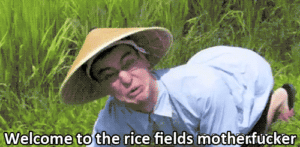 Welcome to the Rice Fields Motherfucker YouTube meme template
