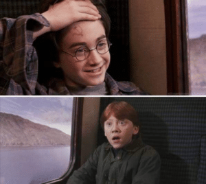 Harry Potter Hammer and Sickle Harry Potter meme template