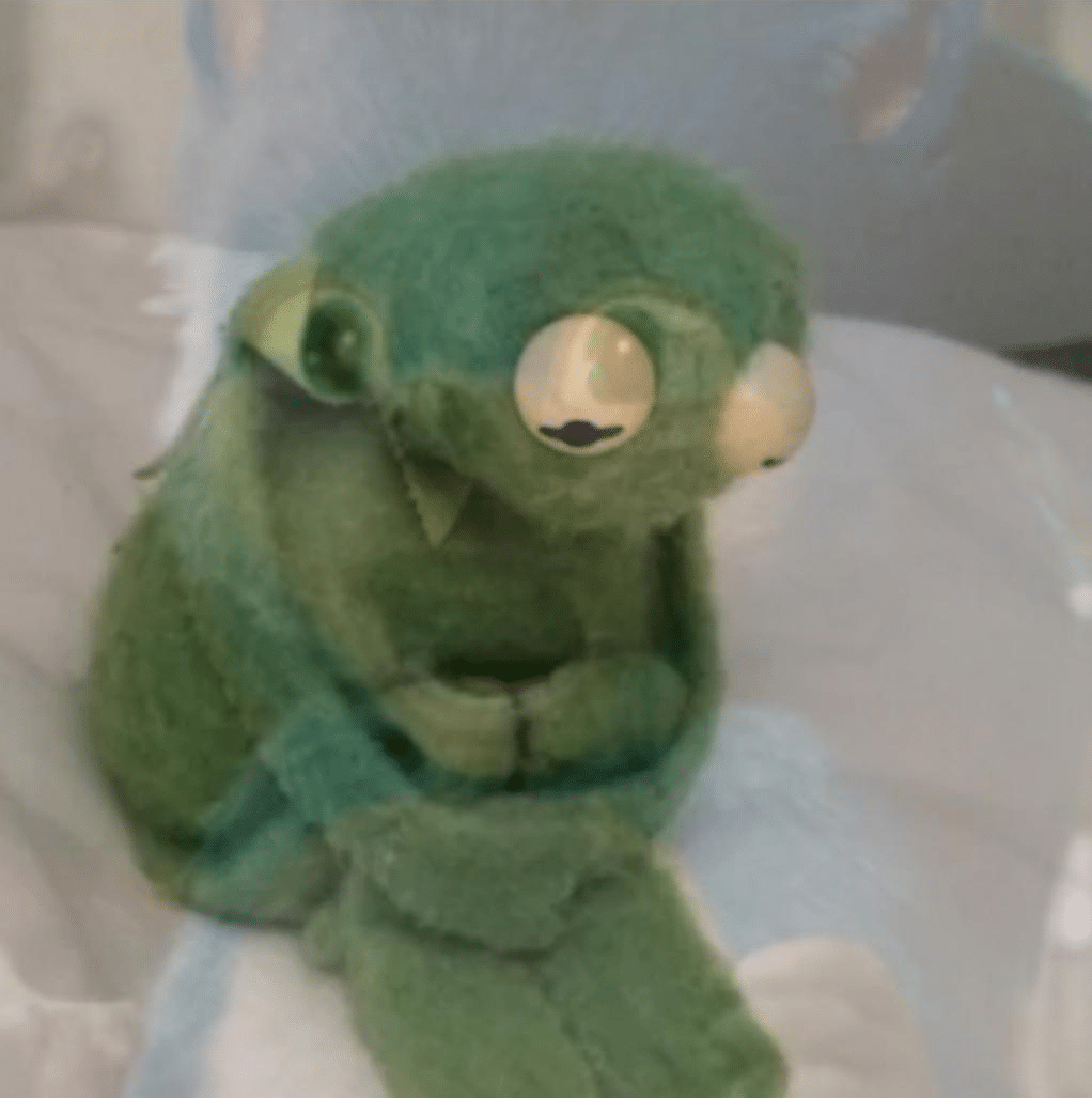 Kermit Crying  meme template blank frog