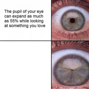 The pupil of your eye expands (shrinks) Opinion meme template