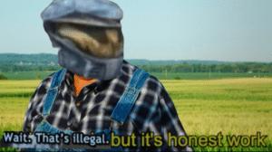 Wait that's illegal but it's honest work Chimera meme template