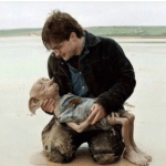 Harry Potter Holding Dead Dobby  meme template blank Harry Potter