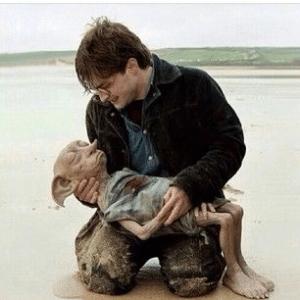 Harry Potter Holding Dead Dobby Harry Potter meme template