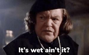 It's wet ain't it Asking meme template