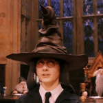 Sorting Hat  meme template blank Harry Potter