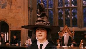 Sorting Hat Harry Potter meme template