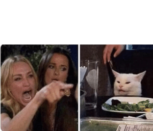Woman Yelling / Pointing at Cat with white space Cat meme template