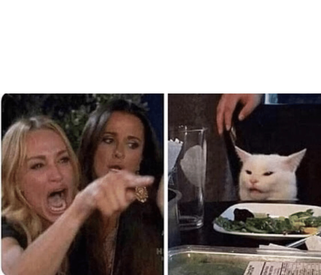 Meme Generator - Woman Yelling / Pointing at Cat with ...