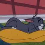 Tom Cat sleeping on pillow  meme template blank