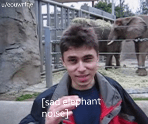Sad Elephant Noises YouTube meme template