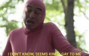 I don't know, seems kinda gay to me YouTube meme template