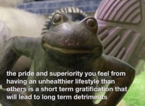 The pride and superiority you feel… Frog meme template