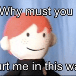 Ron Puppet 'Why must you hurt me this way'  meme template blank  Harry Potter