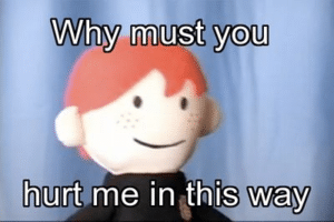 Ron Puppet 'Why must you hurt me this way' Harry Potter meme template
