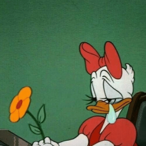 Daisy Duck Sad with Flower Sad meme template