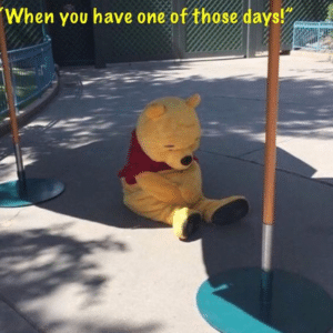 Pooh 'When you have one of those days' Sad meme template