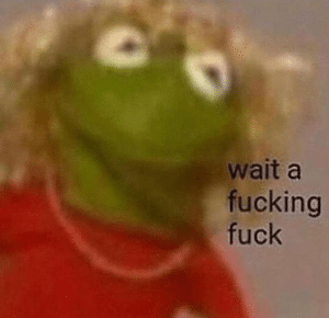 """Kermit """"Wait a fucking fuck"""" Frog meme template"""