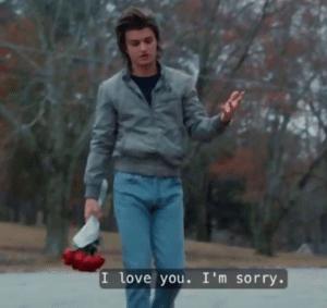 Steve 'I love you Im sorry' Stranger Things meme template