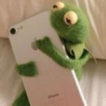 Kermit hugging phone  meme template blank Frog