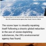wholesome-memes cute text: The ozone layer is on track to completely repair itself in our lifetime The ozone layer is on tract to heal completely during this century, the UN