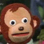 Surprised monkey animal meme template blank surprised, monkey