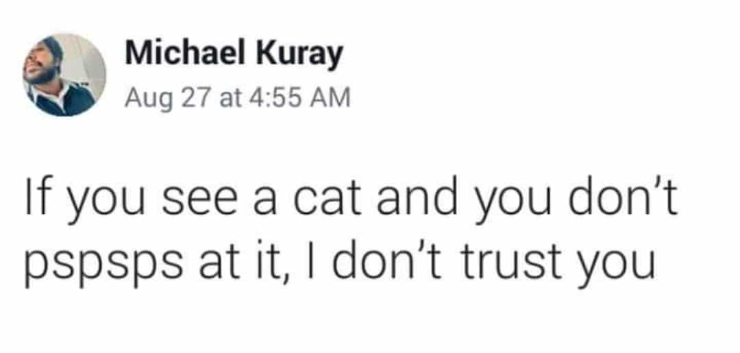 cute wholesome-memes cute text: Michael Kuray Aug 27 at 4:55 AM If you see a cat and you don't pspsps at it, I don't trust you