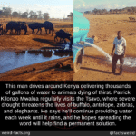 wholesome-memes cute text: This man drives around Kenya delivering thousands of gallons of water to animals dying of thirst. Patrick Kilonzo Mwalua regularly visits the Tsavo, where severe drought threatens the lives of buffalo, antelope, zebras, and elephants. He says he