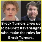 """political-memes political text: Other"""" Brock Turners grow up to be Brett Kavanaughs who make the rules for Brock Turners. @emrazz  political"""