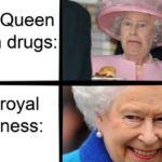other-memes other text: The Queen is on drugs: Her royal highness:  other