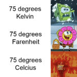 spongebob-memes spongebob text: 75 degrees Kelvin 75 degrees Farenheit 75 degrees Celcius  spongebob