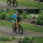 Putting stick in bike irl IRL meme template blank