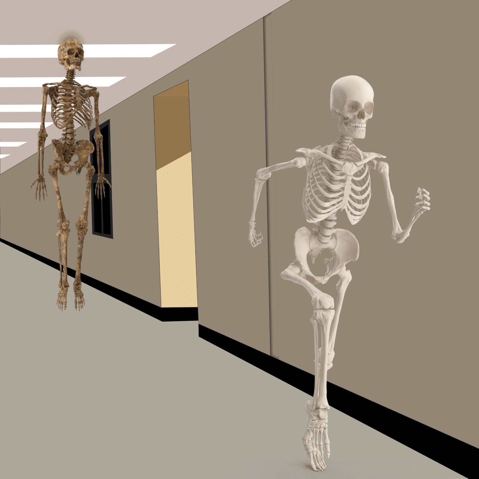 Meme Generator - Floating Skeleton Chasing Skeleton ...