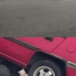 Cat pushing car Vs meme template blank