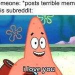 wholesome-memes cute text: Someone: *posts terrible meme* This subreddit: i love you  cute