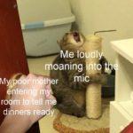 dank-memes cute text: Me 10 dl oaning htt mic My er ntering m ropm to tell m dinners  Dank Meme