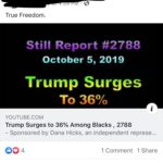 political-memes political text: True Freedom. Still Report #2788 October 5, 2019 Trump Surges To 36% i YOUTUBE.COM Trump Surges to 36% Among Blacks , 2788 - Sponsored by Dana Hicks, an independent represe... 00 4 [D Like 1 Comment 1 Share C) Comment Share  political