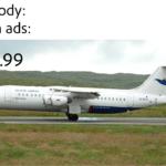dank-memes cute text: Nobody: Wish ads: 29.99 AIRWAYS OY.RCc  Dank Meme