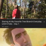 wholesome-memes cute text: Staring At My Favorite Tree Branch Everyday Until It Falls - Day 1 117 views ÄNot• bad kid  cute